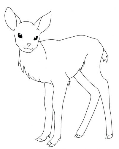 401x500 Coloring Pages Deer Coloring Pages Baby Sheets Deer Coloring