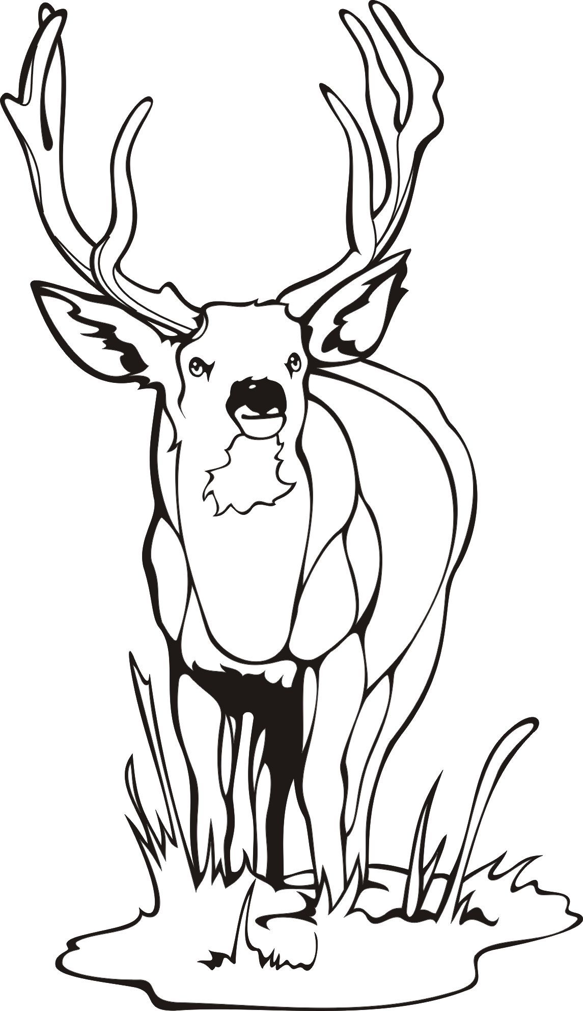 1145x1983 Deer Coloring Page Adult Coloring Pages Wildlife