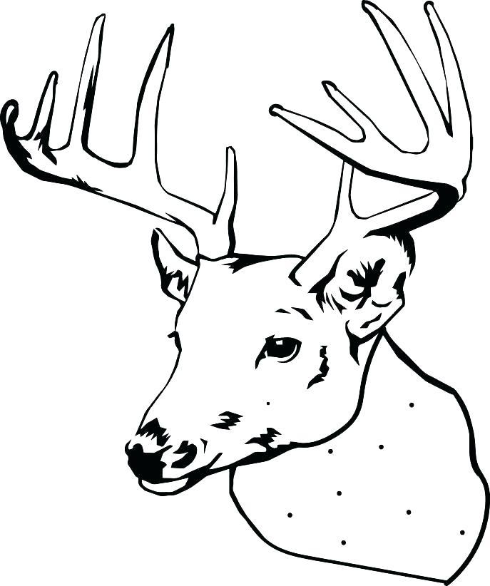 687x822 Free Deer Coloring Pages Adult Coloring Pages Deer Free Free Deer