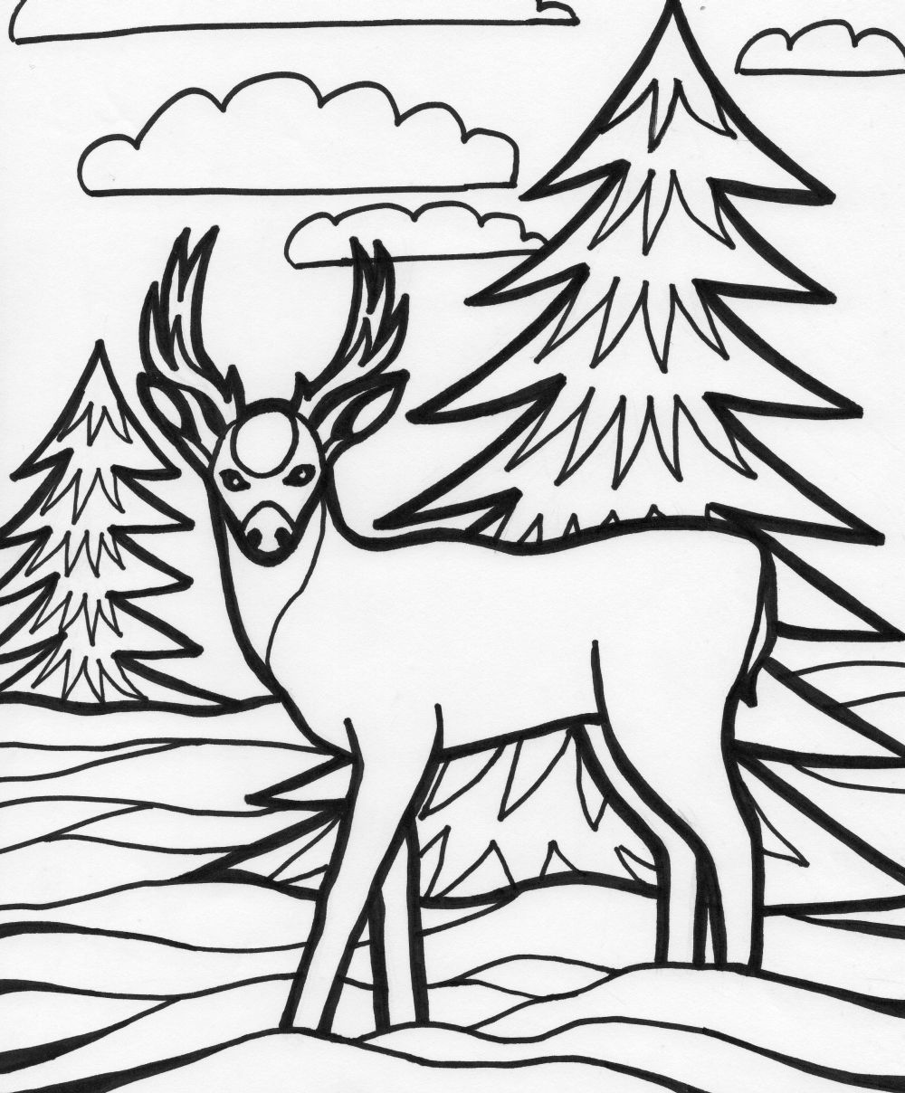 1000x1208 Deer Color Pagecolor Printable Coloring Pages Baby Picture