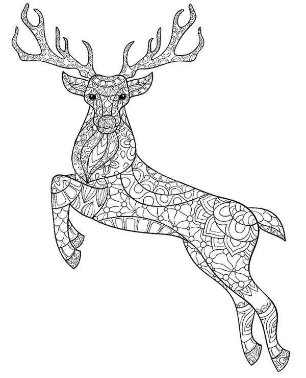 600x740 Deer, Stag Printable Colouring Pages For Adults