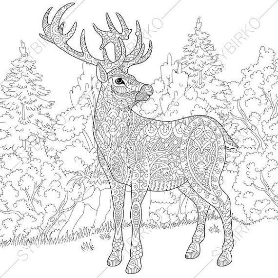 570x570 Deer Reindeer Coloring Pages Animal Coloring Book Pages