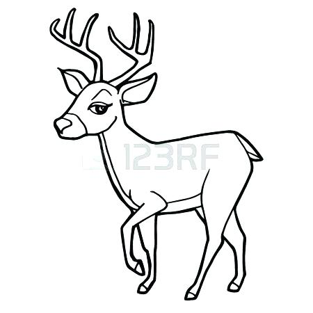 450x450 Mother And Baby Deer Coloring Pages Deer Coloring Picture Cartoon