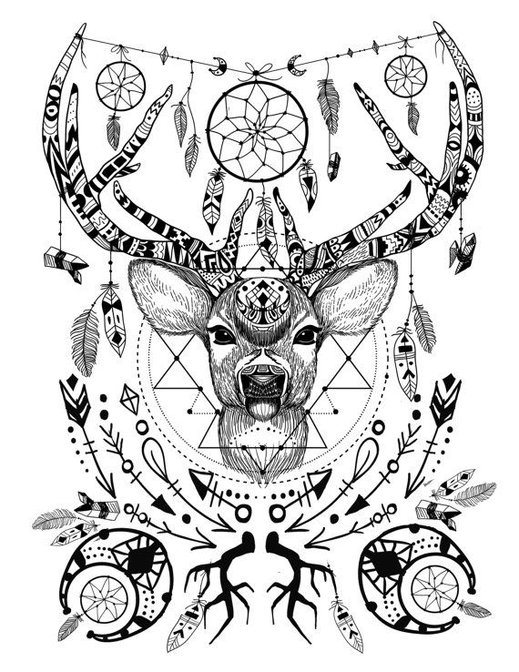 570x738 Adult Coloring Pages Mandala Of A Deer Download