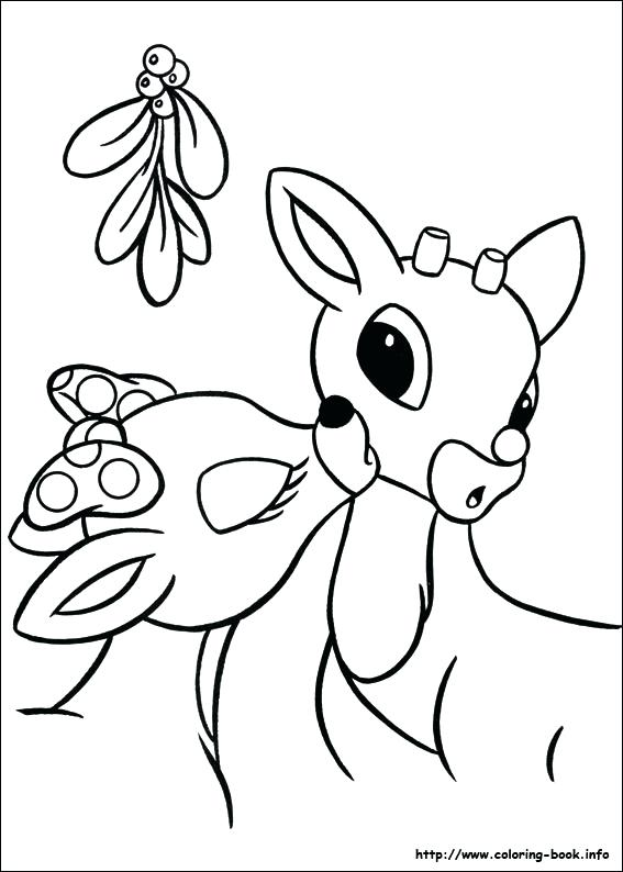 567x794 Deer Pictures To Color