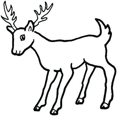 400x398 Coloring Pages Deer Deer Color Pages Deer Coloring Page Free