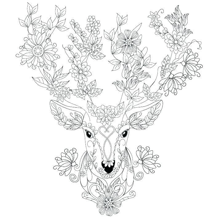 709x709 Coloring Pages Deer