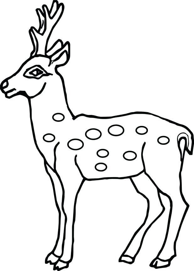 618x863 Deer Printable Kids Colouring Baby Reindeer Coloring Pages Page