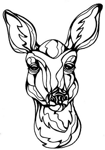 352x500 Deer Face Picturescoloring Sheets Wood Burning