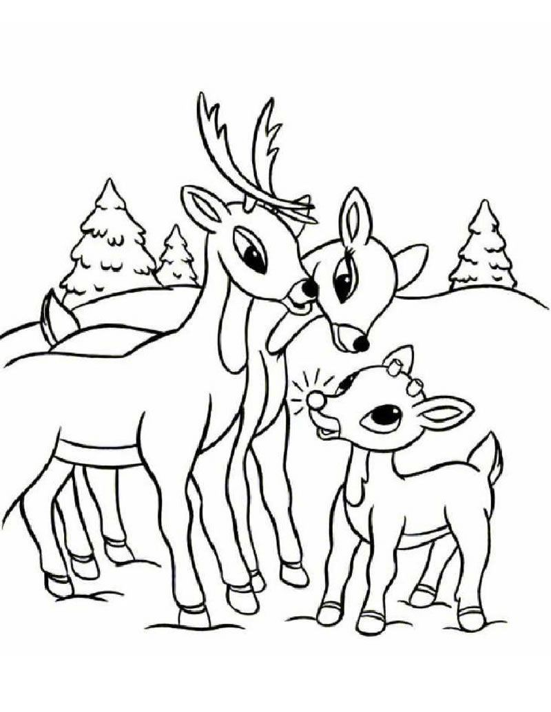 800x1034 Rudolph Family Coloring Page Christmas Coloring Pagesworksheets