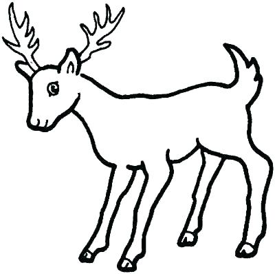 400x398 Deer Coloring Pages