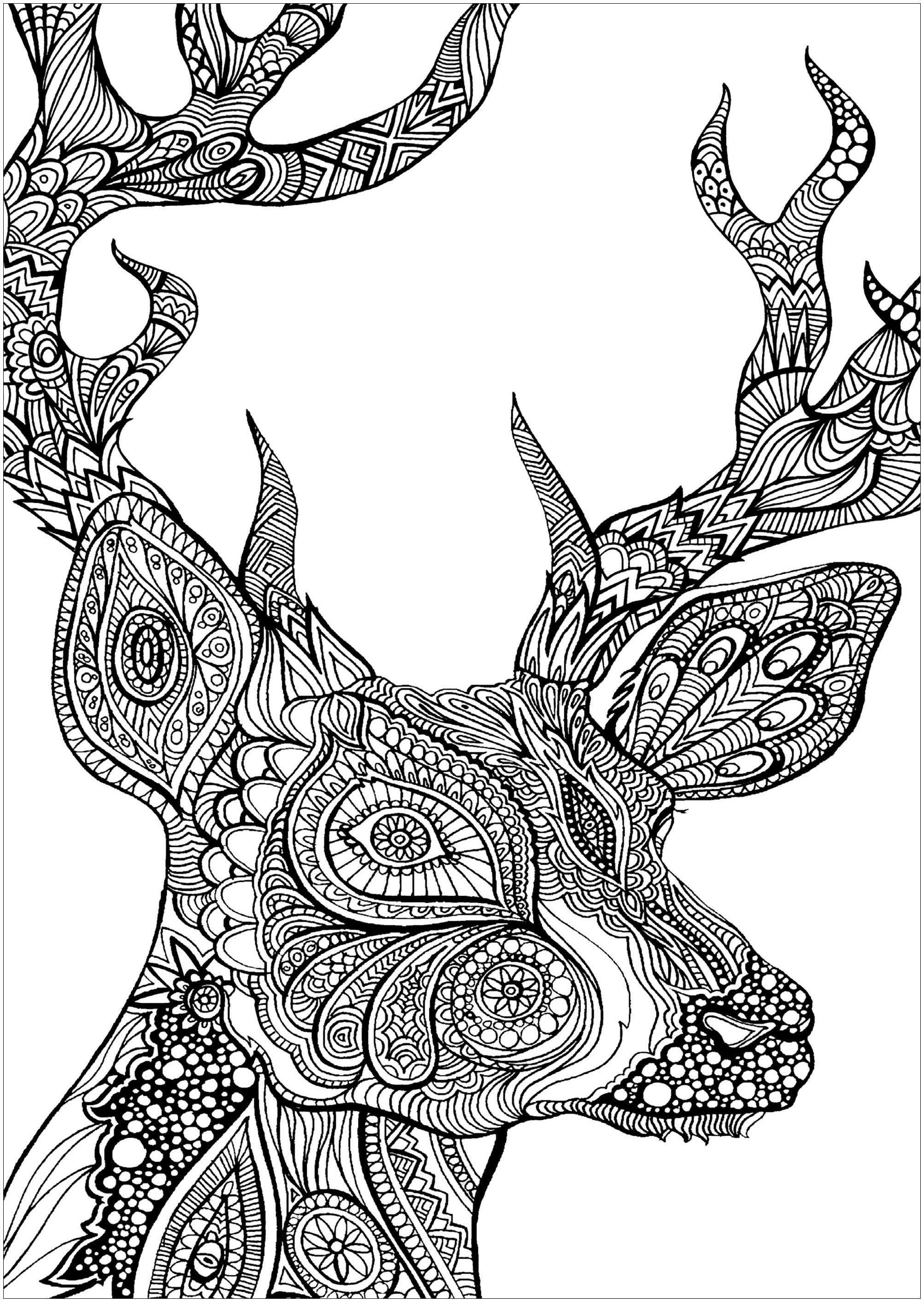 2006x2828 Deer Animals Printable Coloring Pages Throughout Designs