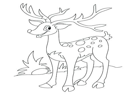 476x333 Deer Coloring Pages Coloring Page Free John Deere Coloring Pages