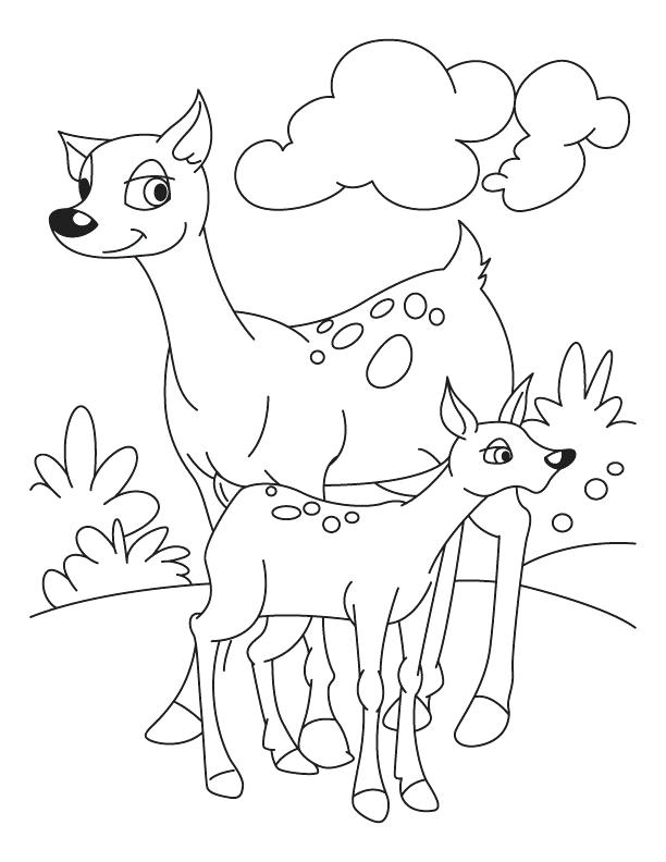 612x792 Deer Coloring Pages Fawn With Deer Coloring Pages Deer Head