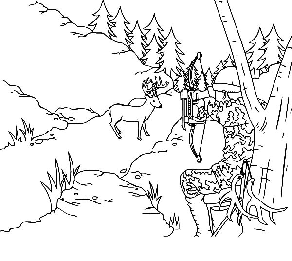600x535 Deer Hunting Coloring Pages With Camouflage Sky Get Bubbles