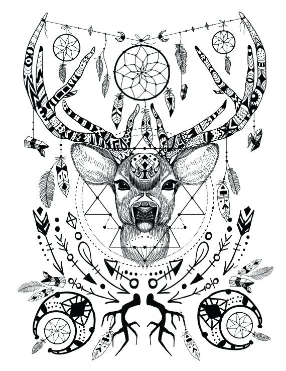 570x738 Deer Coloring Pages Coloring Pages Of Deer Coloring Pages Deer