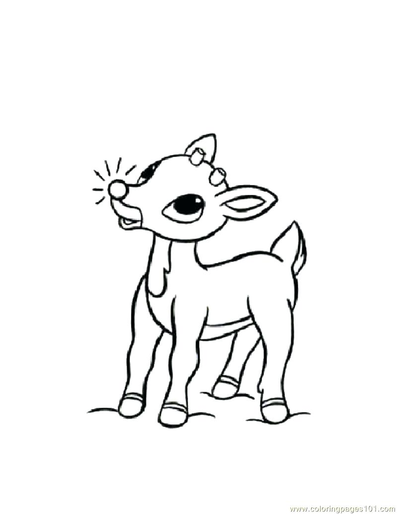 800x1034 Coloring Pages Deer Coloring Page Head Outline Deer Coloring