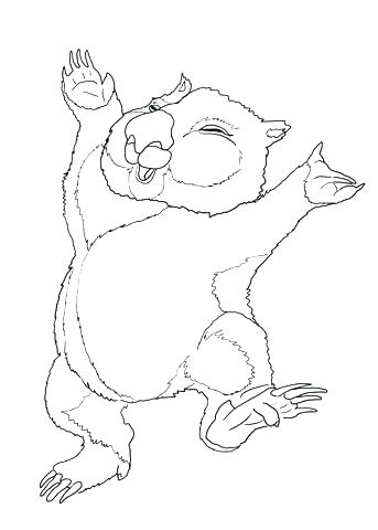 343x480 Wombat Coloring Page Mammals Wombats Ages Under Wombat Divine