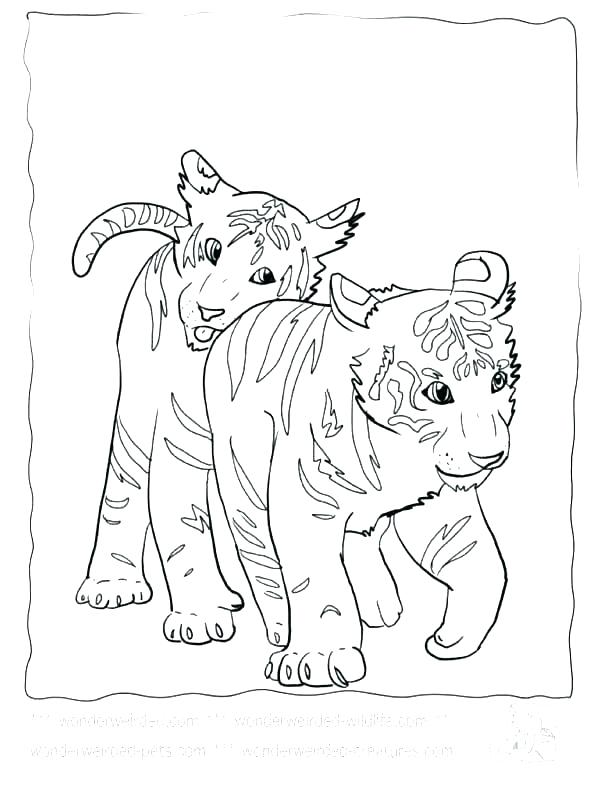 612x792 Cub Scout Pinewood Derby Coloring Pages Page Tiger Baby Pag