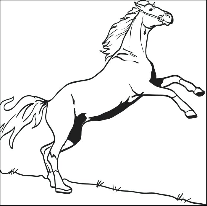700x698 Horse Coloring Page Derby Horse Coloring Pages Animal Coloring