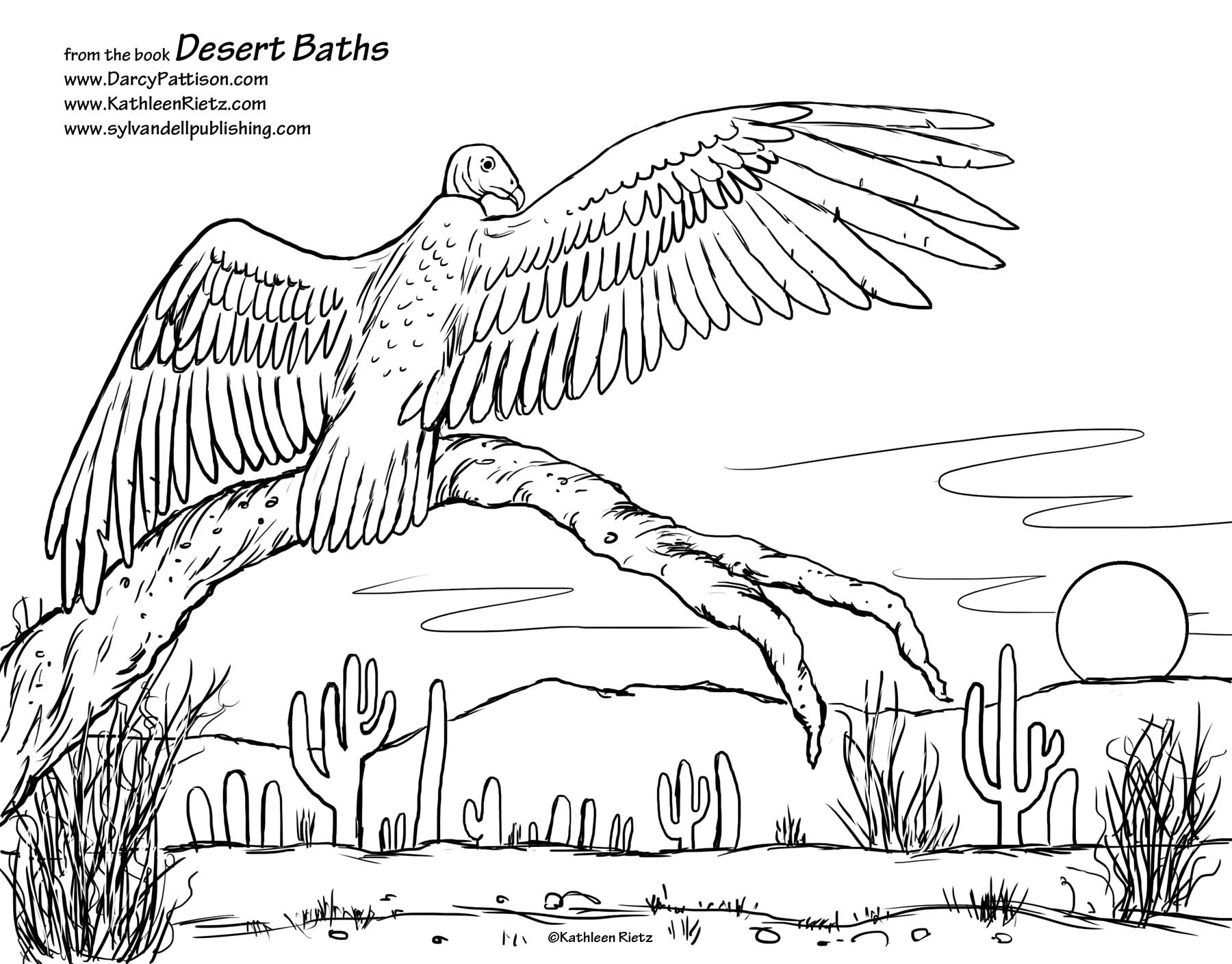 Desert Animals And Plants Coloring Pages At Getdrawings Com Free