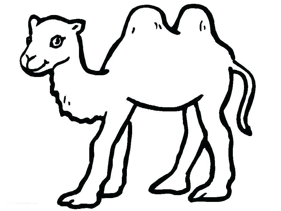 957x718 Desert Animal Coloring Sheets Animal Coloring Pages Free Printable