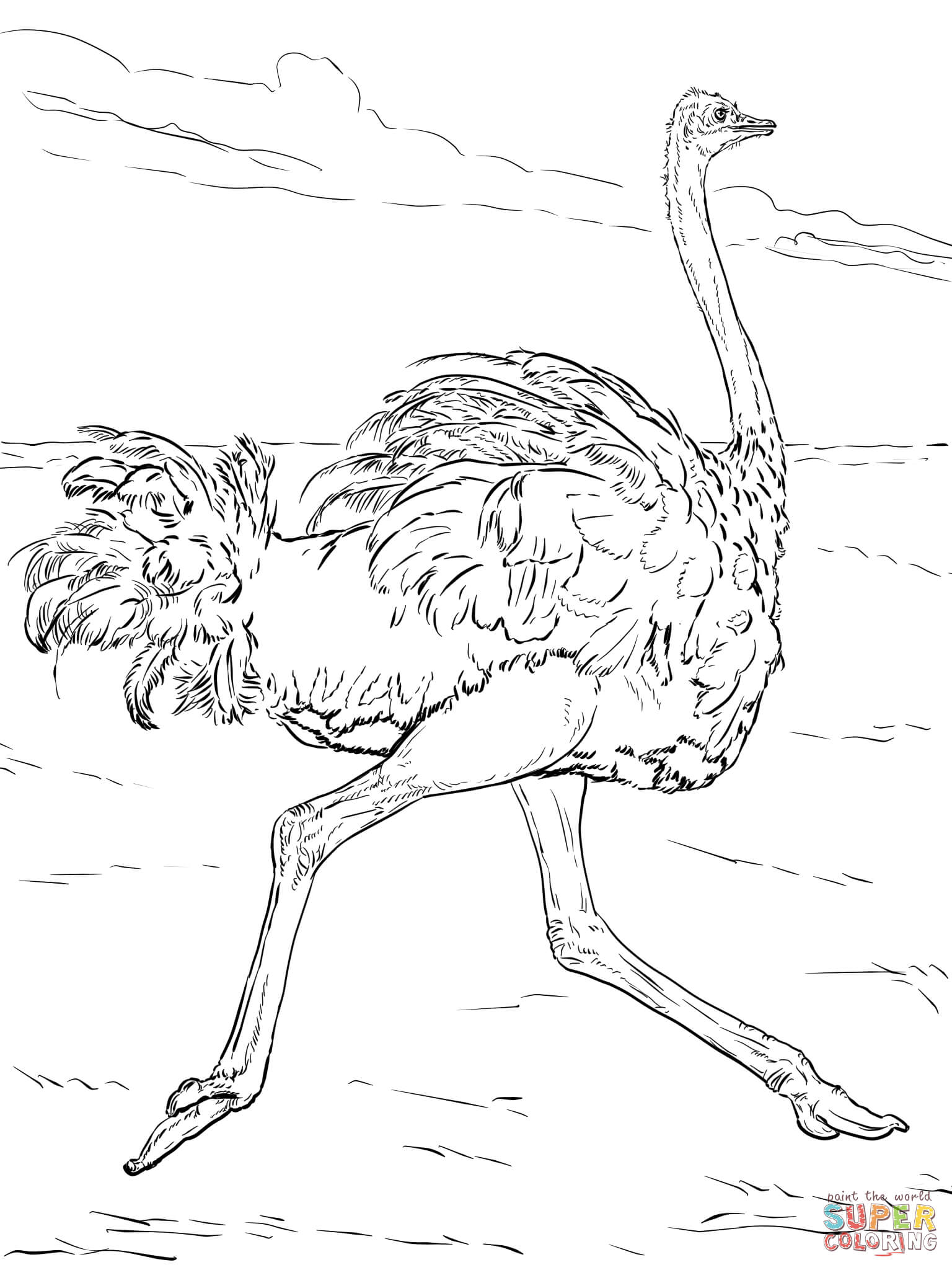 1536x2048 Desert Animals Coloring Pages Preschool In Tiny Print Pict