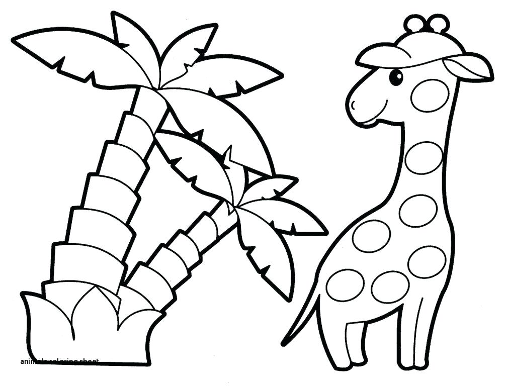 1008x768 Desert Animals Coloring Pages Printable Sheet With Free Animal