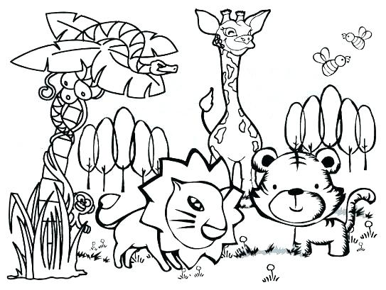 543x409 Sonoran Desert Animal Coloring Pages Animals Printable Jungle