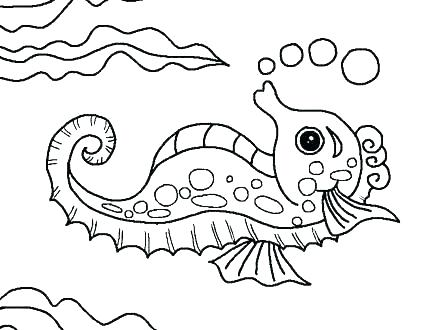 440x330 Water Animals Coloring Pages Water Animals Coloring Pages Ocean