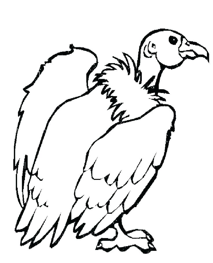 736x908 Wildlife Coloring Pages Desert Animals Coloring Pages Cute Animal