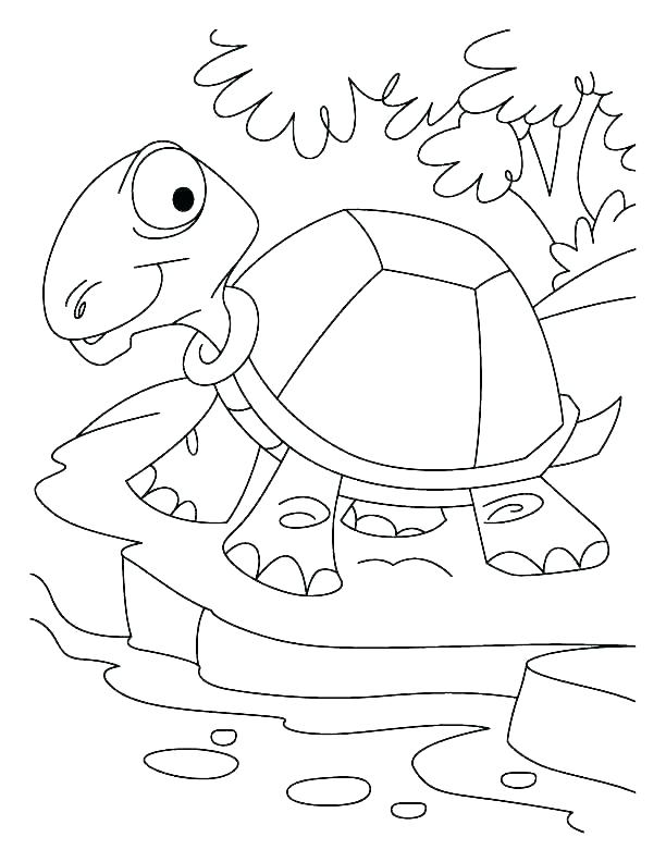 612x792 Desert Coloring Pages Desert Animals Coloring Page Free Printable