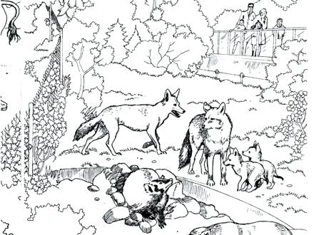 440x330 Animal Habitat Coloring Pages Ocean Habitat Coloring Pages Animal