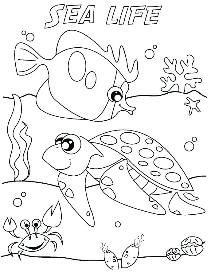 687x902 Animal Habitat Coloring Pages