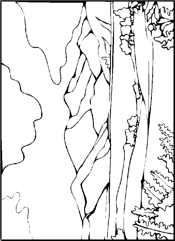 Desert Landscape Coloring Pages