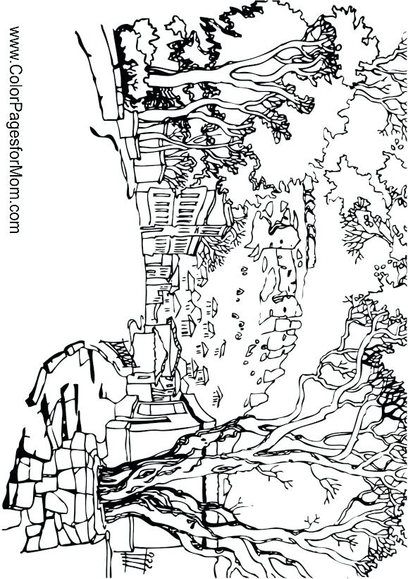 579x820 Landscape Coloring Pages And Landscape Coloring Page Desert
