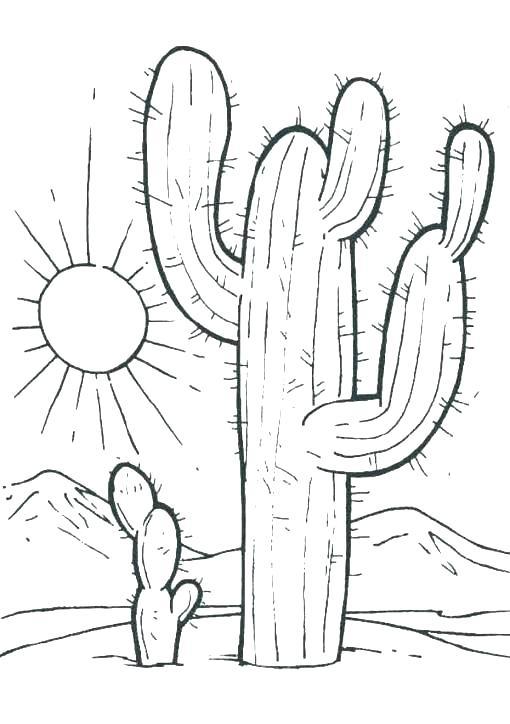 510x724 Desert Coloring Pages Desert Coloring Pages Desert Landscape