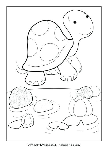 460x650 Desert Tortoise Coloring Page Colouring