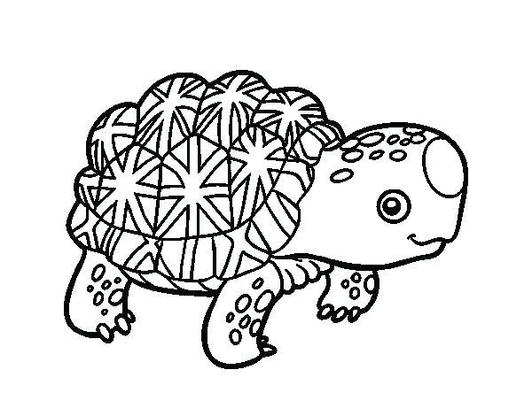 600x470 Tortoise Coloring Page Coloring Page Tortoise Desert Tortoise