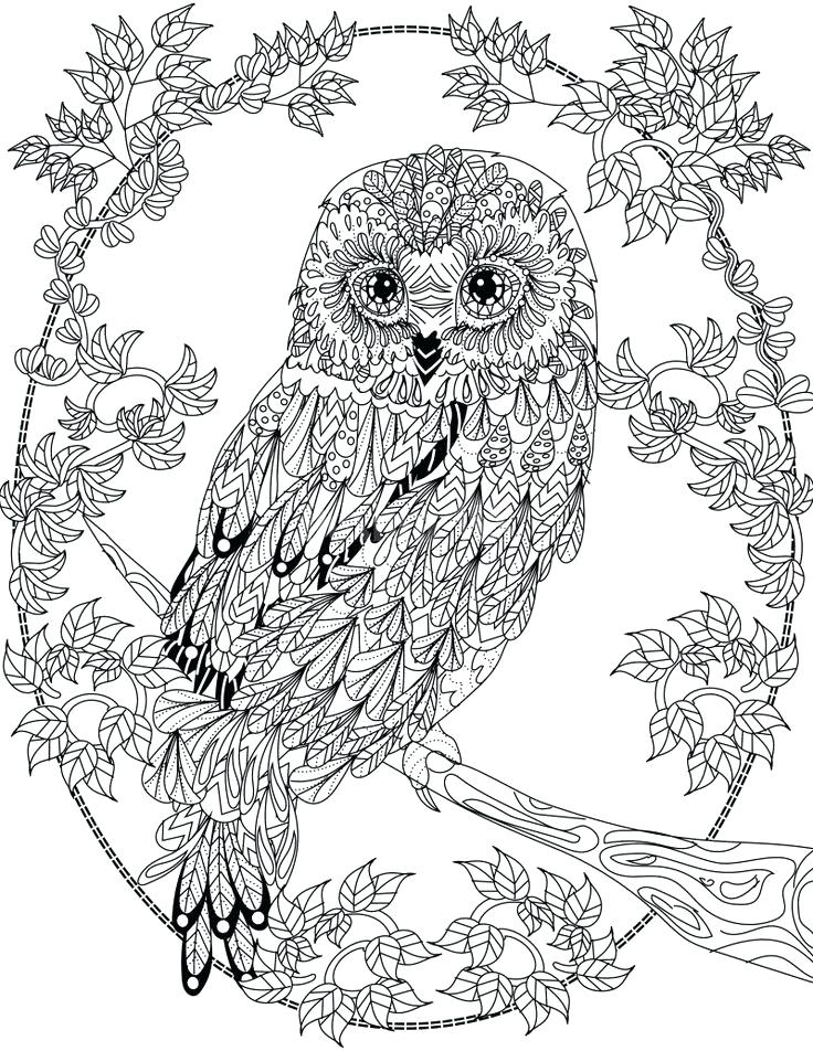 736x952 Good Coloring Pages Kids Color Pencil And In Designs Good Coloring