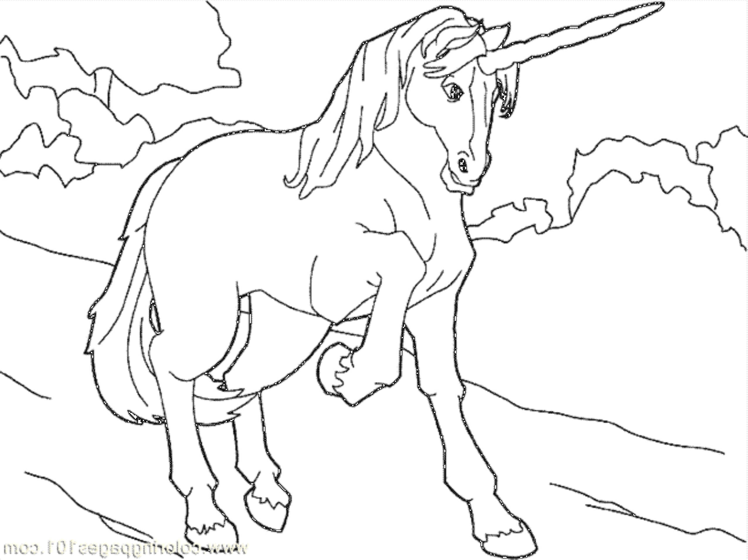 2551x1911 Despicable Me Unicorn Coloring Page Despicable Me Coloring Pages