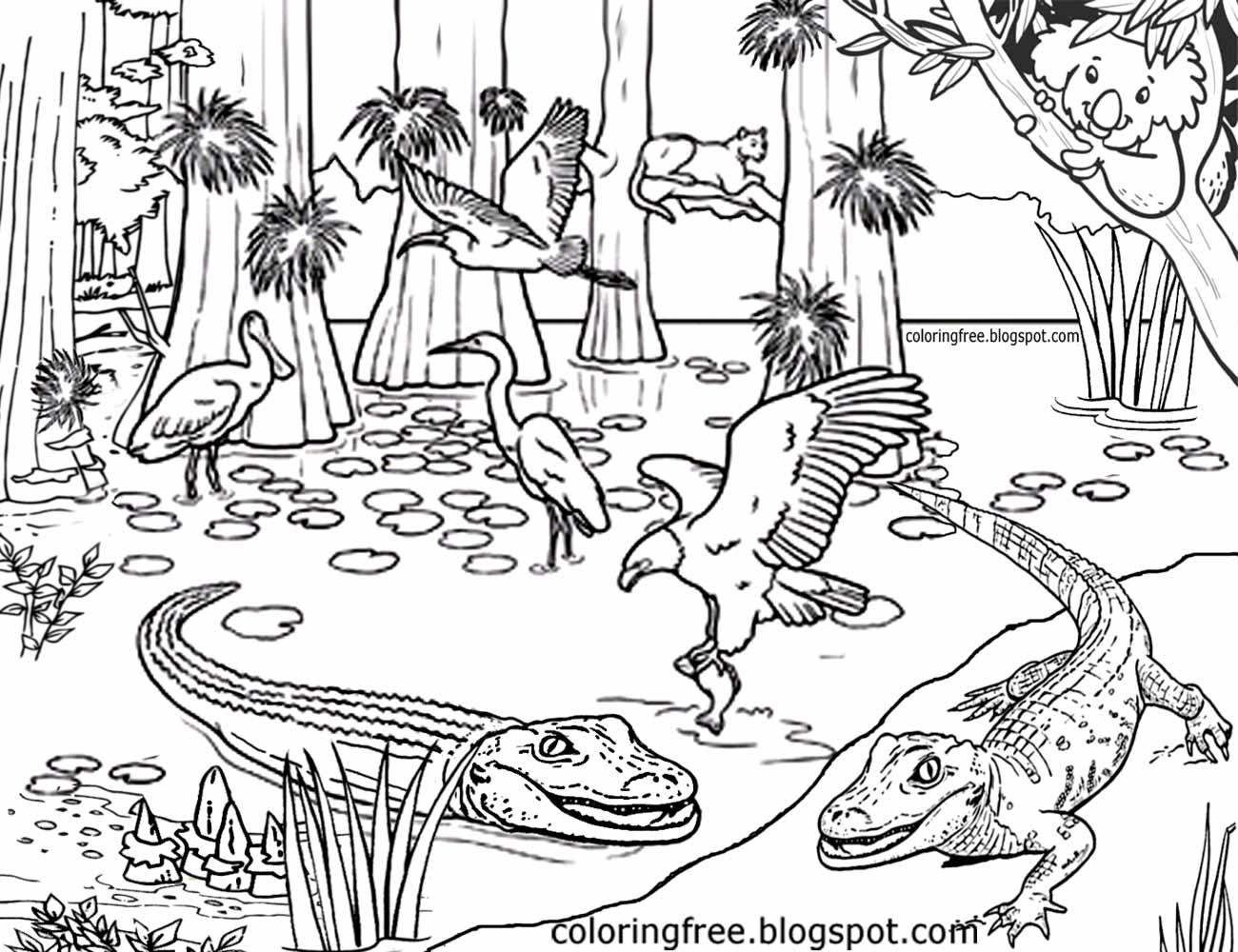 1300x1000 Destiny Australian Outback Coloring Pages Limited