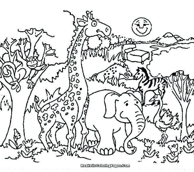 678x600 Wildlife Coloring Pages Printable Wildlife Coloring Pages Coloring
