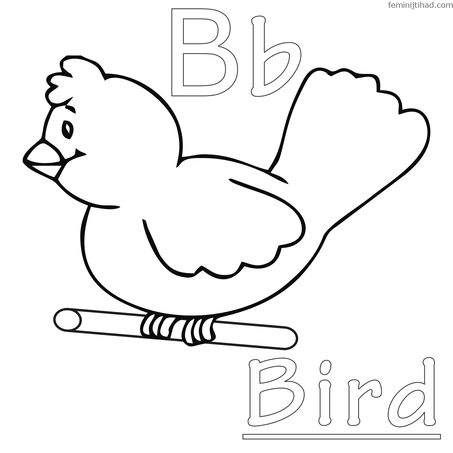Detailed Bird Coloring Pages at GetDrawings.com | Free for personal ...