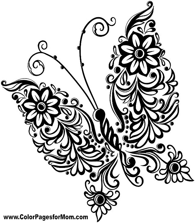Detailed Butterfly Coloring Pages At Getdrawings Com Free For