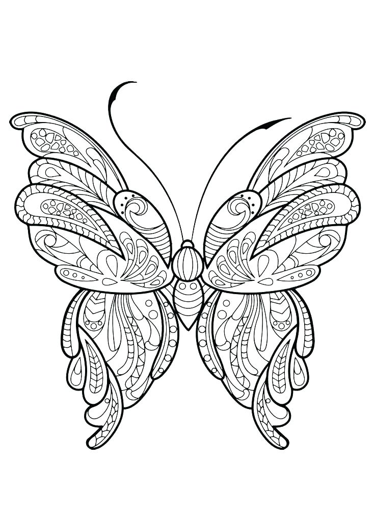 736x1040 Butterfly Coloring Pages Butterfly Color Pages Detailed Butterfly