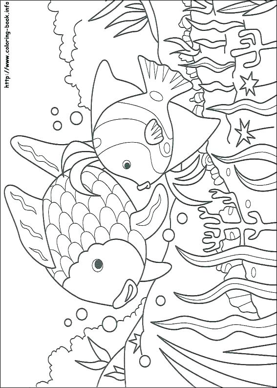 567x794 Fish Coloring Pages For Adults Plus Free Fish Fish Coloring Pages