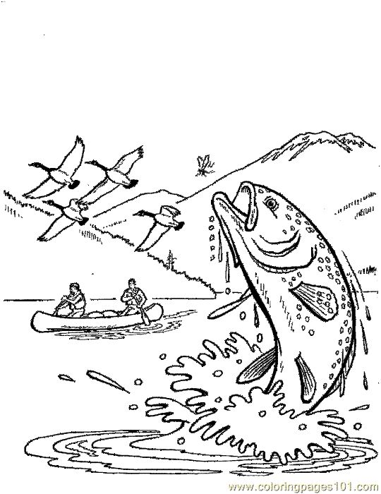 540x700 Freshwater Fish Coloring Pages