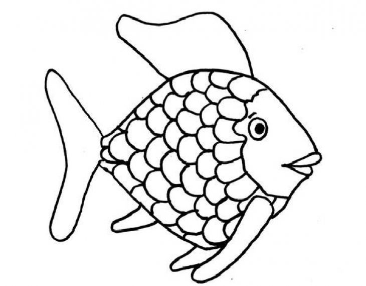 730x569 Rainbow Fish Coloring Pages
