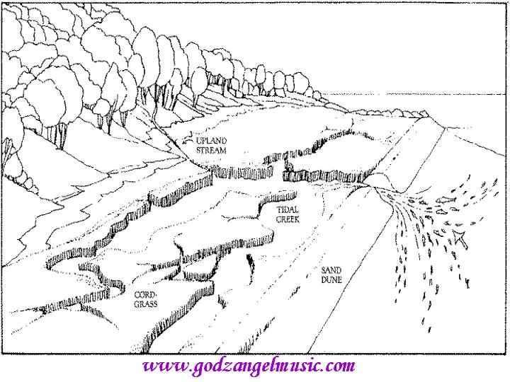 720x540 Landscape Coloring Pages For Adults Category, Landscape Colouring